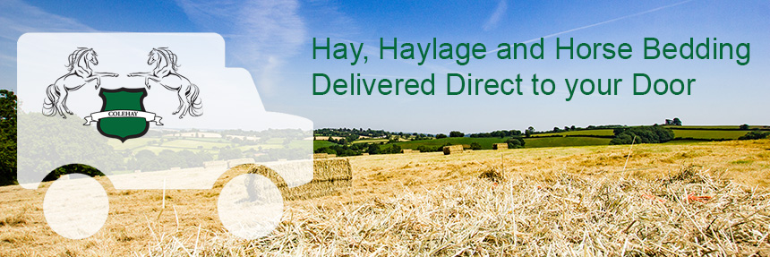 Hay, Haylage and Horse Bedding Delivered Direct to your Door