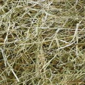 Small Bale Devon Meadow Hay - Conventional Bale